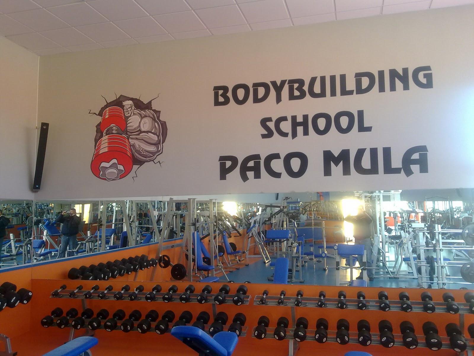 Gimnasio budybuilding school paco mula almer a bullbock - Gimnasio paredes ...